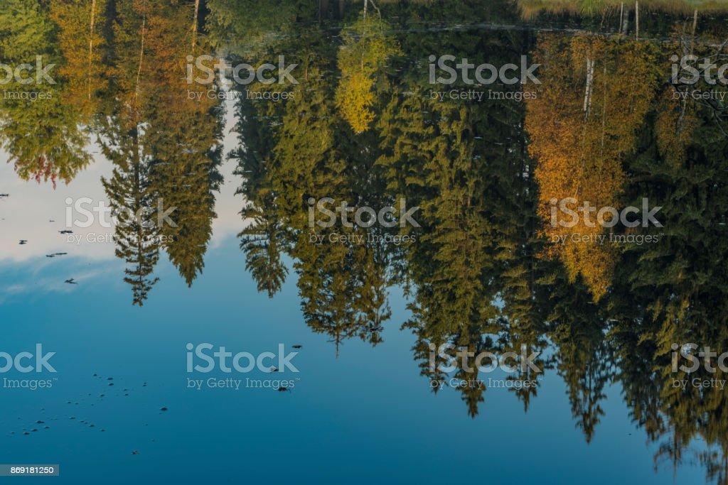 Kladska pond with rebound in water in autumn morning stock photo