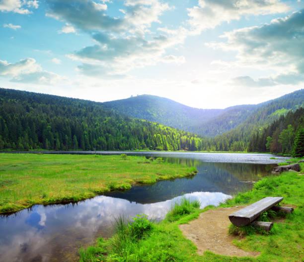 kleiner arbersee lake i nationalparken bayerska skog, tyskland. - bayerischer wald bildbanksfoton och bilder
