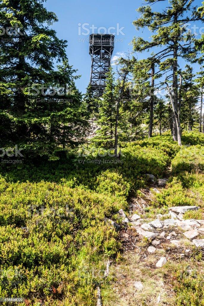 Klepac (Trojmorski Wierch) hill in Kralicky Sneznik (Snieznik) mountain on czech-polish borders stock photo