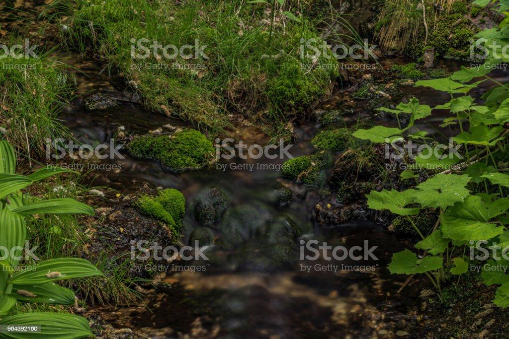 Klokotivy creek in Jizerske gebergte in de lente - Royalty-free Berg Stockfoto