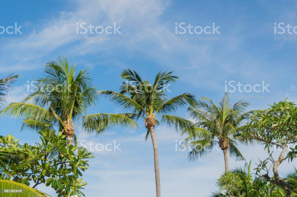Klong Prao Beach Koh Chang Trad Thailand Lizenzfreies stock-foto