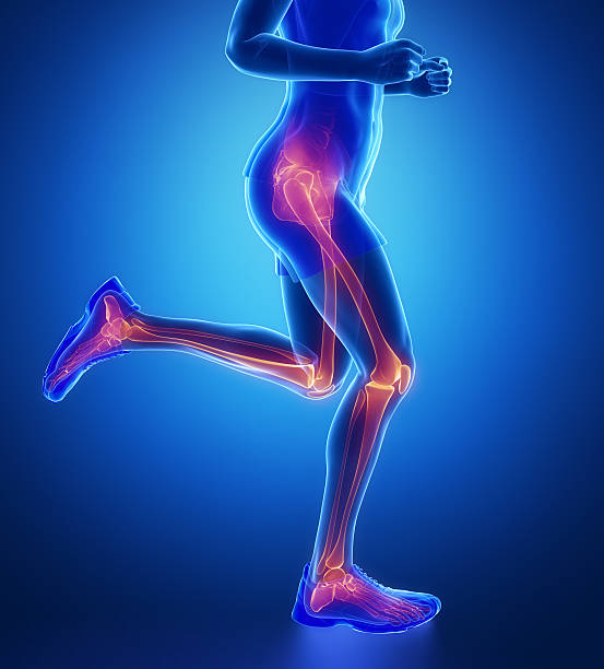 Knee, hip, ankle - running man leg scan in blue Knee, hip, ankle - running man leg scan in blue janulla stock pictures, royalty-free photos & images