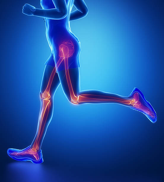 knee, hip, ankle - running man leg scan in blue - os du pied photos et images de collection