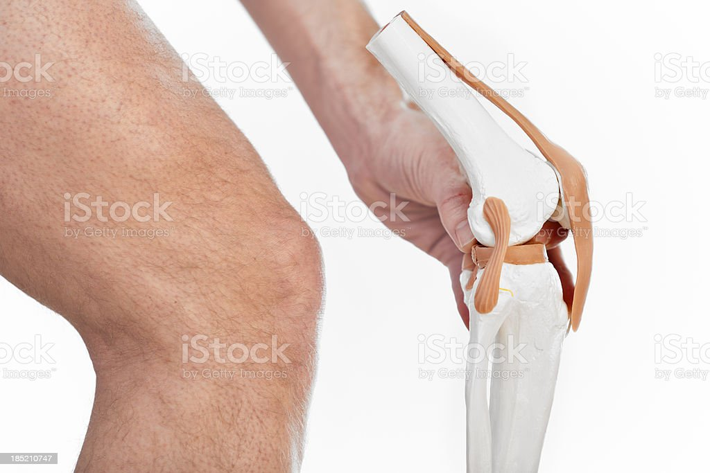 Knee joint stock photo