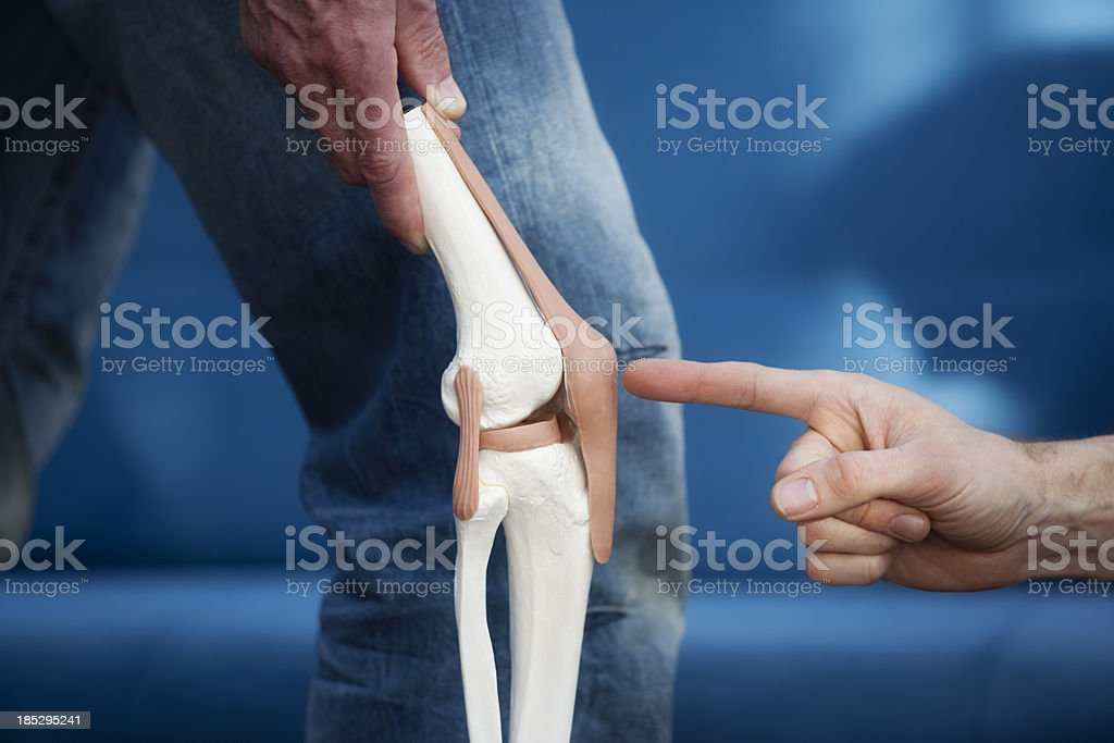 Knee joint royalty-free stock photo