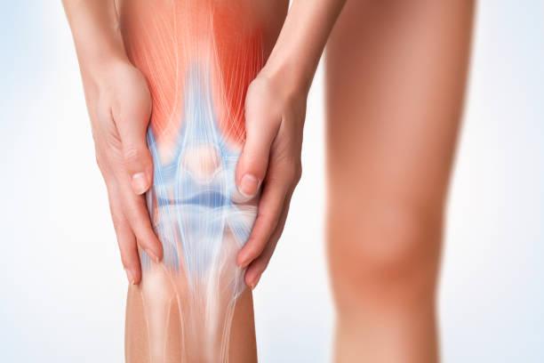 膝蓋疼痛區。 - 人體部分 個照片及圖片檔