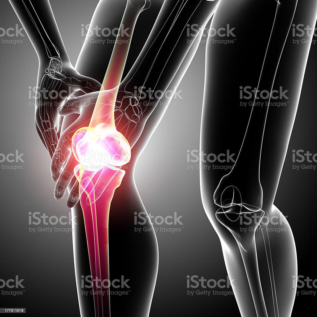 knee pain with bone royalty-free stock photo