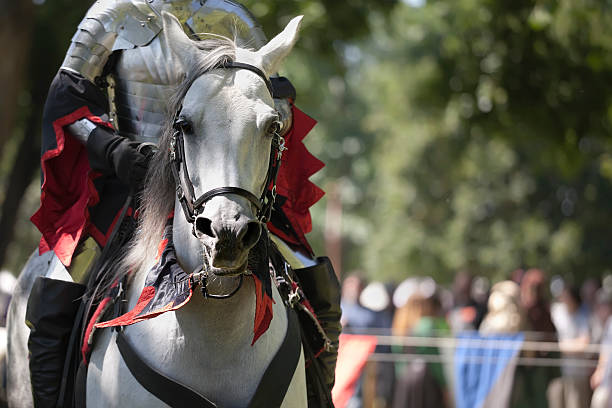 knight in shining armor on white horse (xl) - knight on horse stock photos and pictures