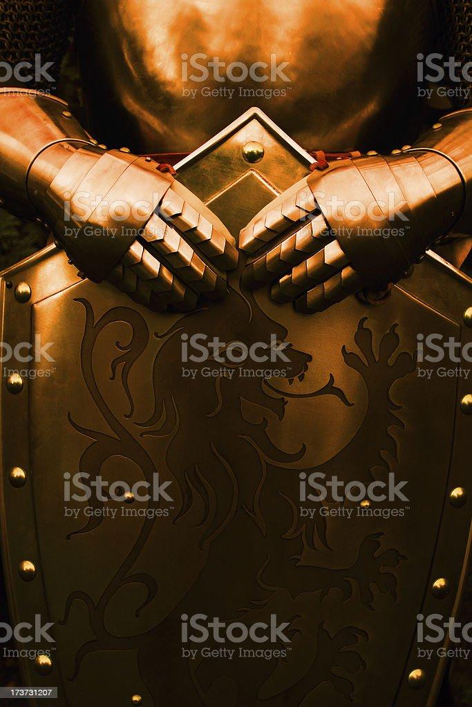 Knight, avec couleur marron - Photo