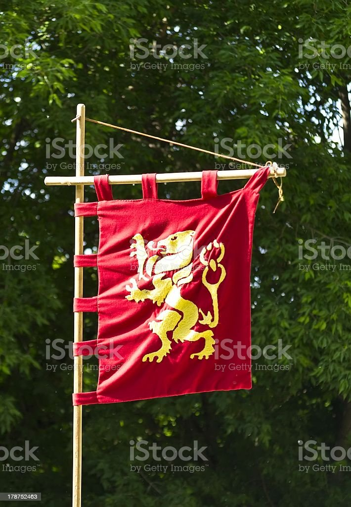 Knight's flag golden lion on a red background stock photo