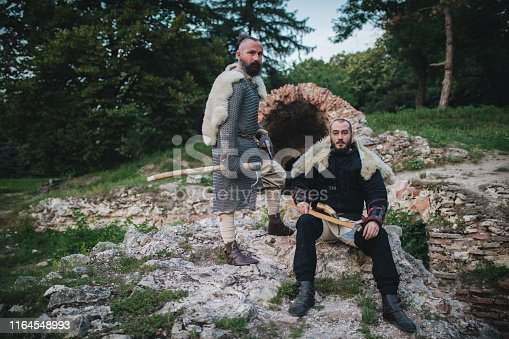 istock Knights protecting the forest 1164548993