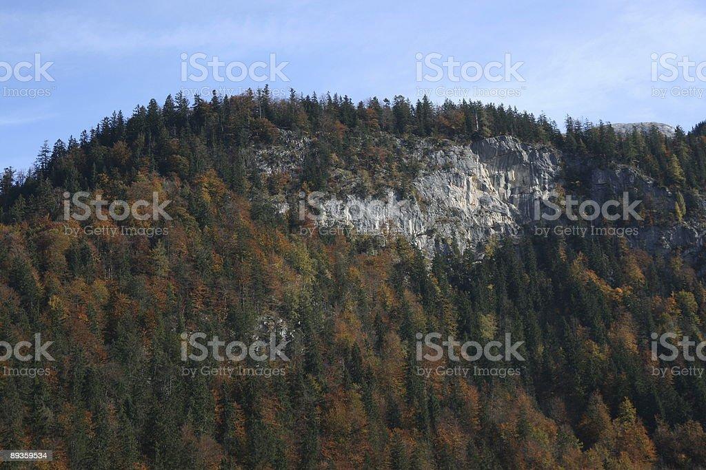 Koenigssee forestale in colori autunnali foto stock royalty-free