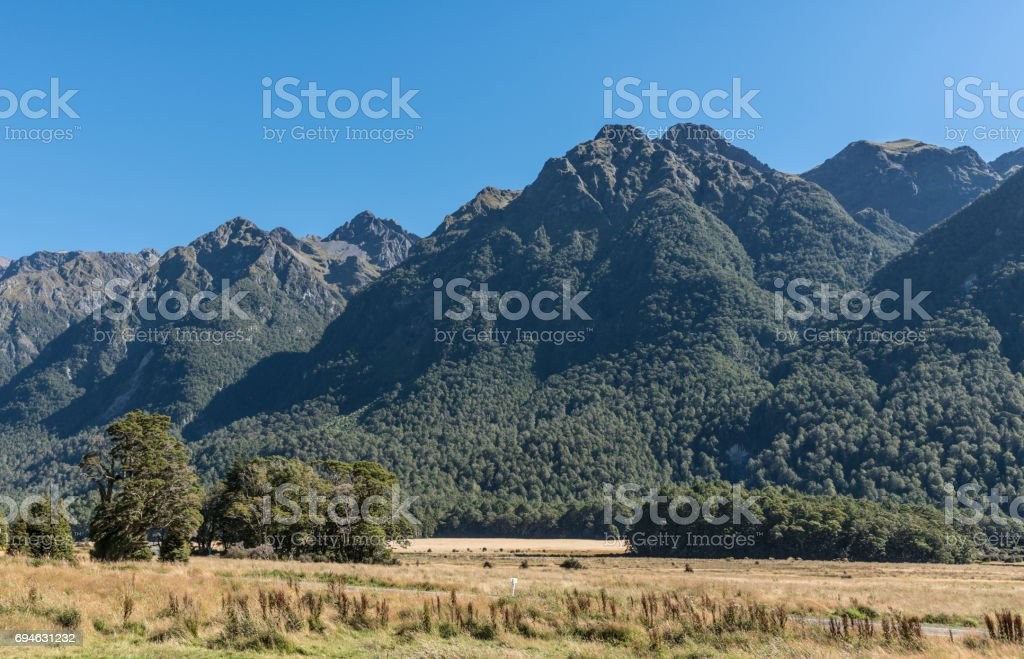 Knobs Flats landscape in Fiordland National Park, New Zealand. stock photo