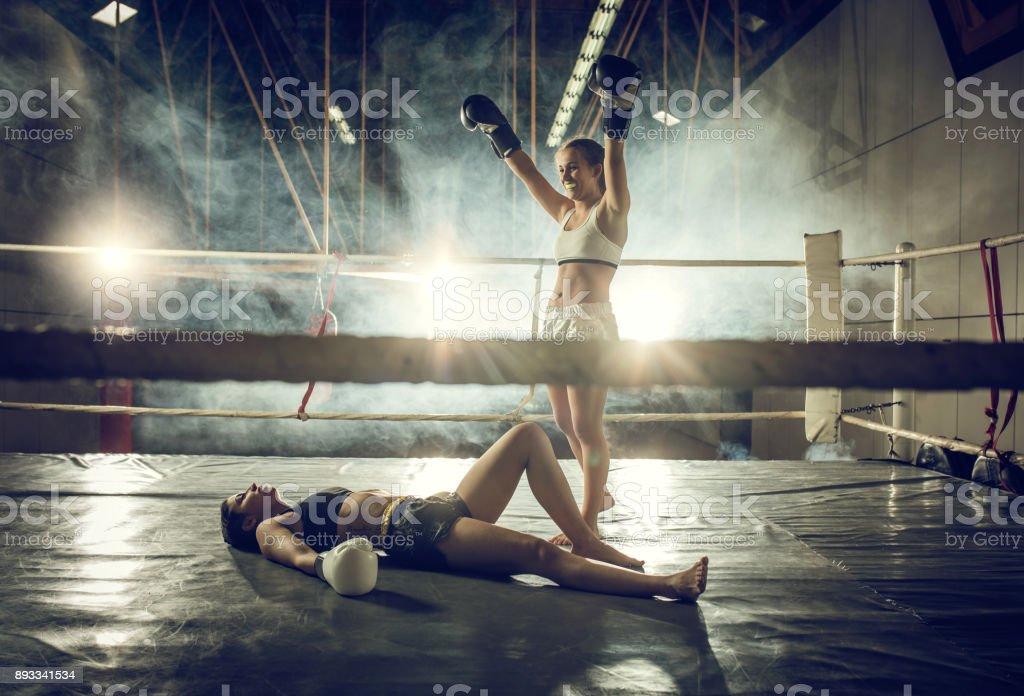 Nocaute no boxe! - foto de acervo