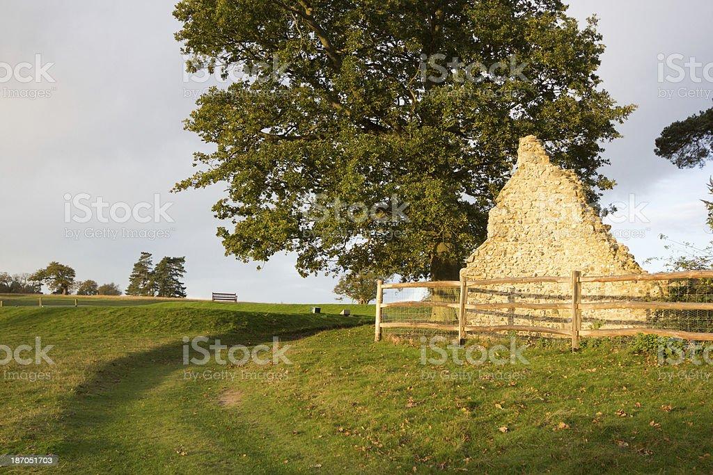 Knole Park in Sevenoaks, England royalty-free stock photo