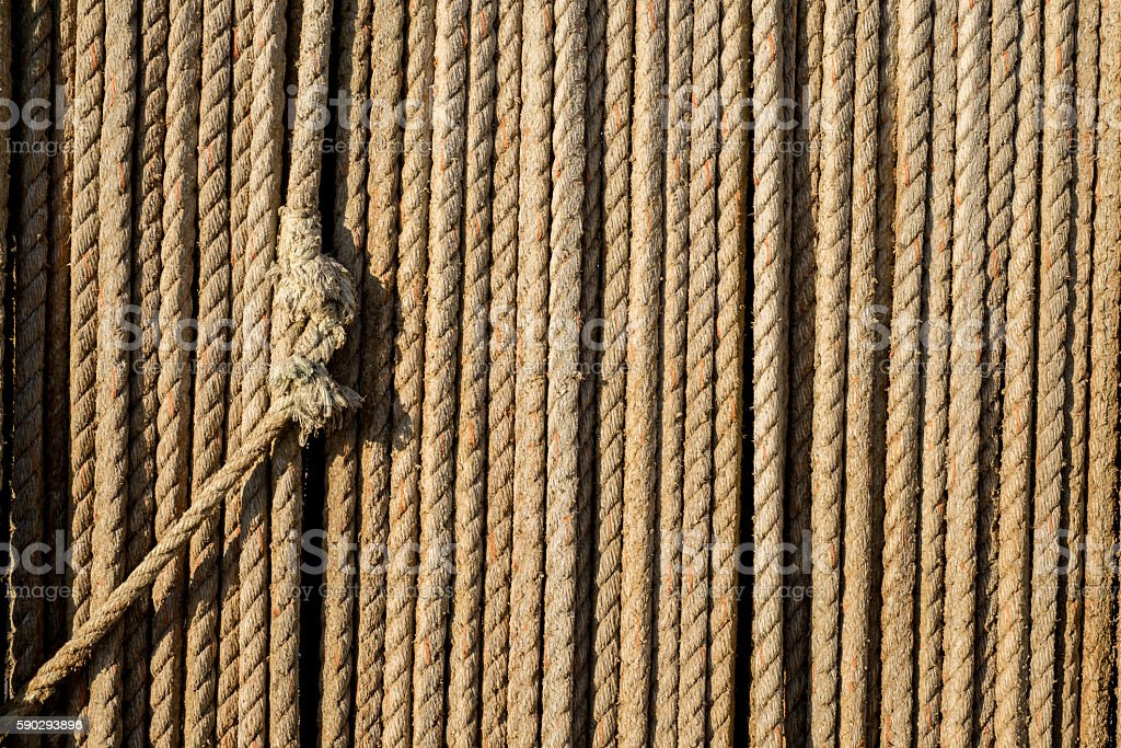 Knot in fibre roap royaltyfri bildbanksbilder