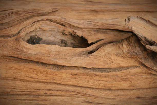 knothole old wood texture - knotted wood stock pictures, royalty-free photos & images