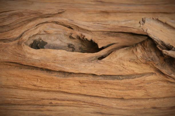 knothole old wood texture stock photo