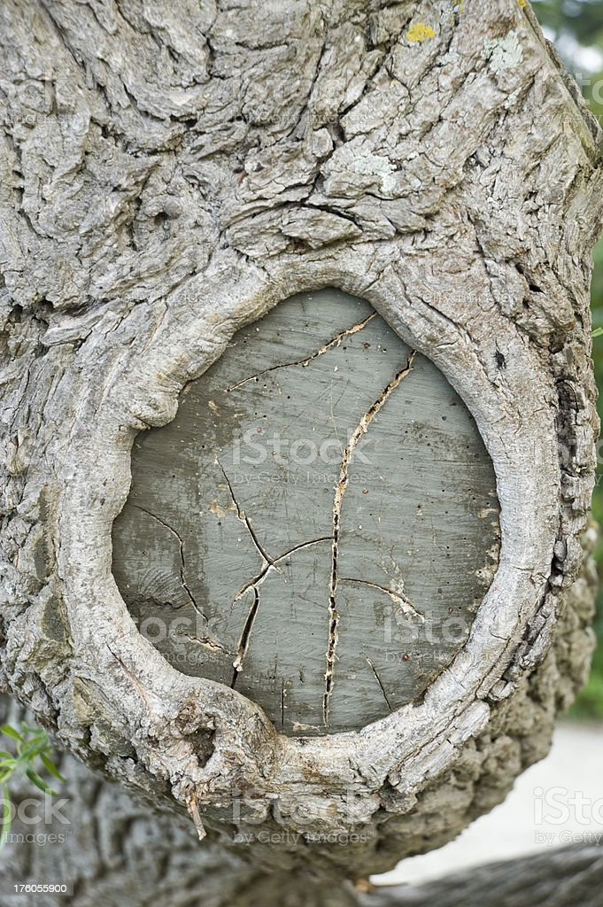 Knothole stock photo