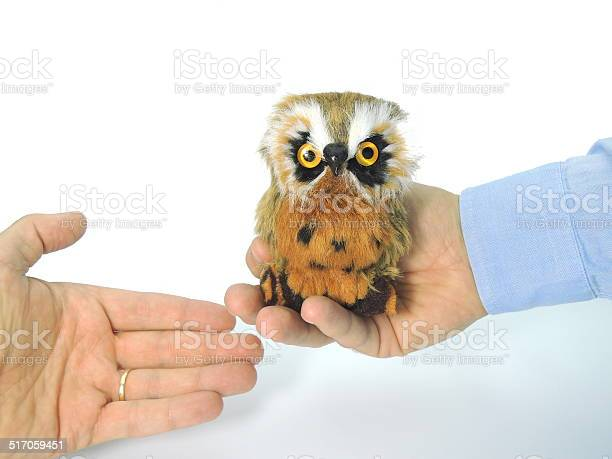 Knowledge transfer symbolized by handing over an owl picture id517059451?b=1&k=6&m=517059451&s=612x612&h=8hscdg e6kghyx p6wdcs6vrtyadexdq8h1p3 wfooc=