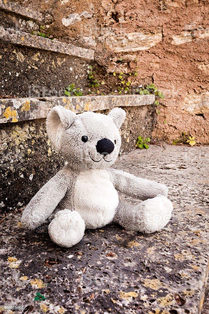 Koala bear soft toy stock photo