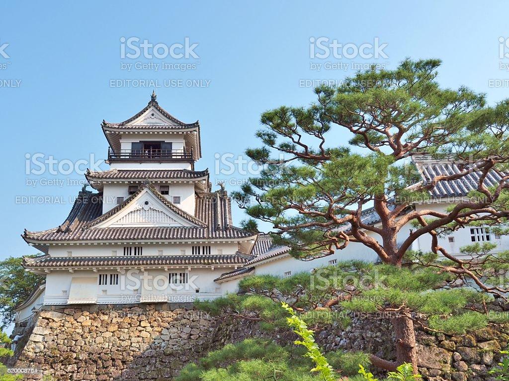 Kochi Castle stock photo