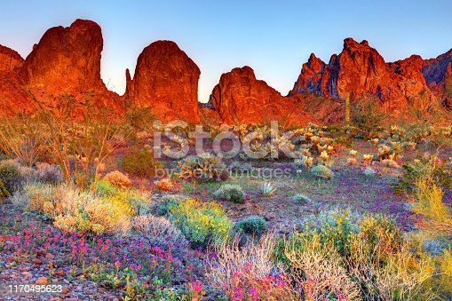 The Kofa Mountains of Yuma and La Paz counties in Arizona is the central mountain range of the Kofa National Wildlife Refuge.