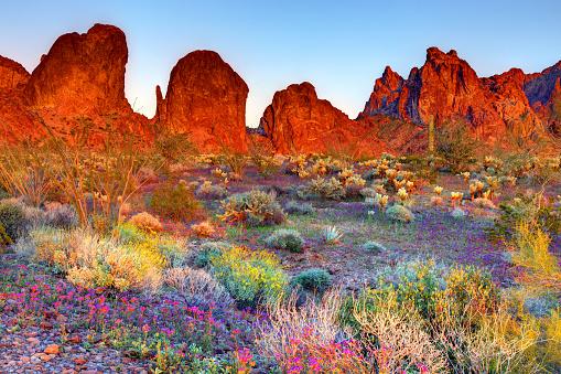 The Kofa Mountains of Yuma and La Paz counties in Arizona is the central mountain range of the Kofa National Wildlife Refuge.