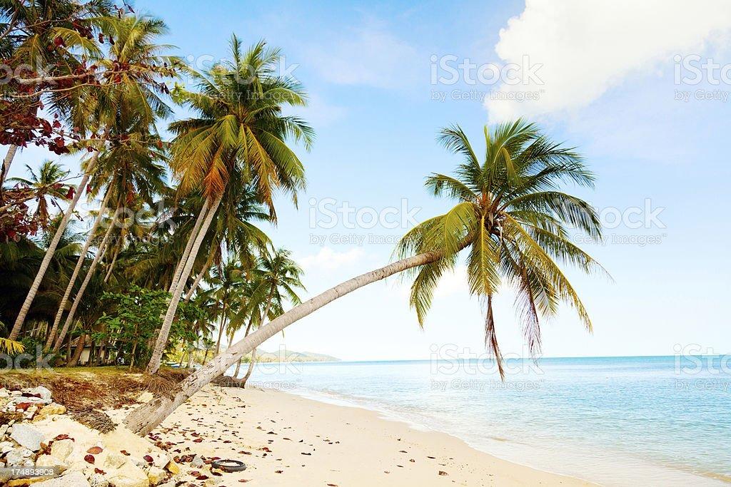 Koh Samui beach royalty-free stock photo