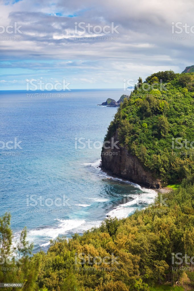 Kohala Forest Pololu Valley Lookout Big Island Hawaii Stock Photo & More  Pictures of Beach