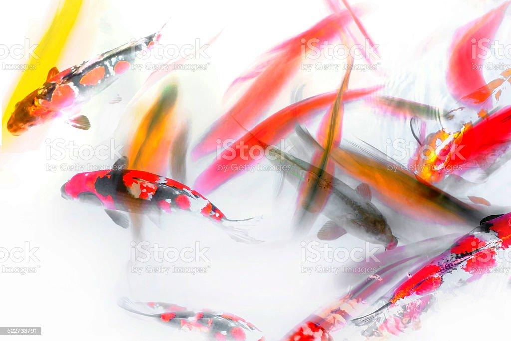 Koi Fish and Goldfish Abstract Watercolor stock photo