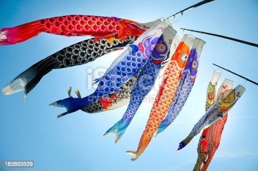 Traditional koi shaped japanese kite called koinobori against blue sky in Hiroshima.
