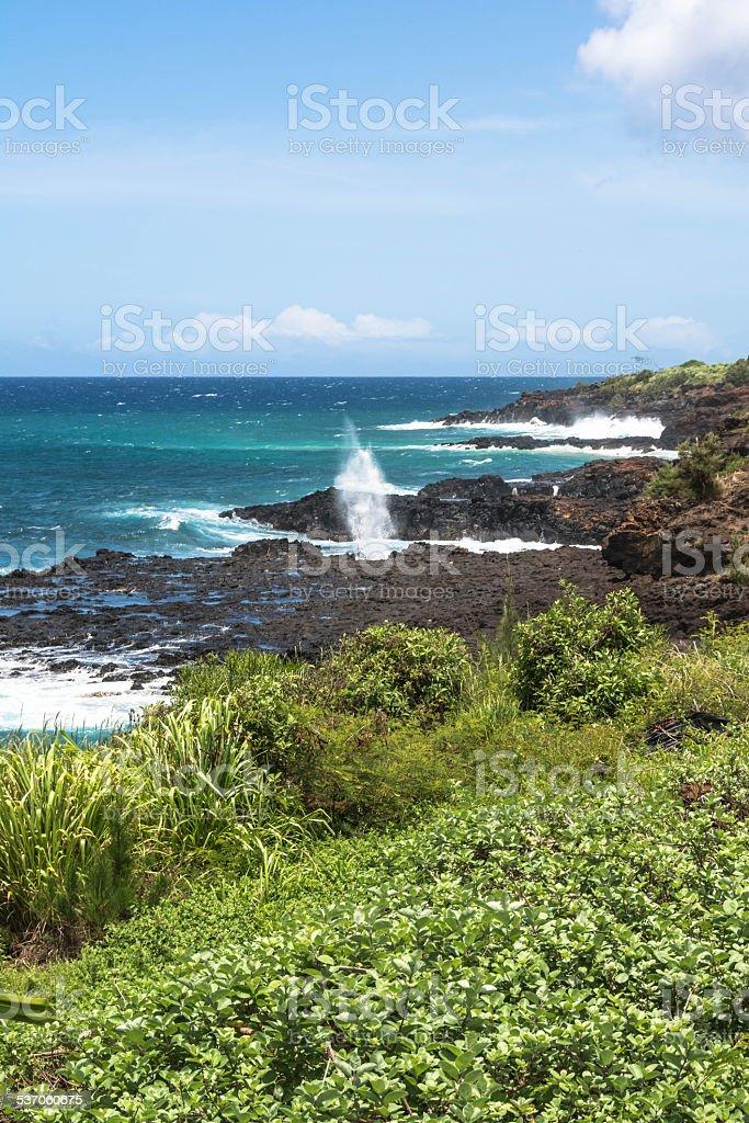 Koloa coast,Kauai stock photo