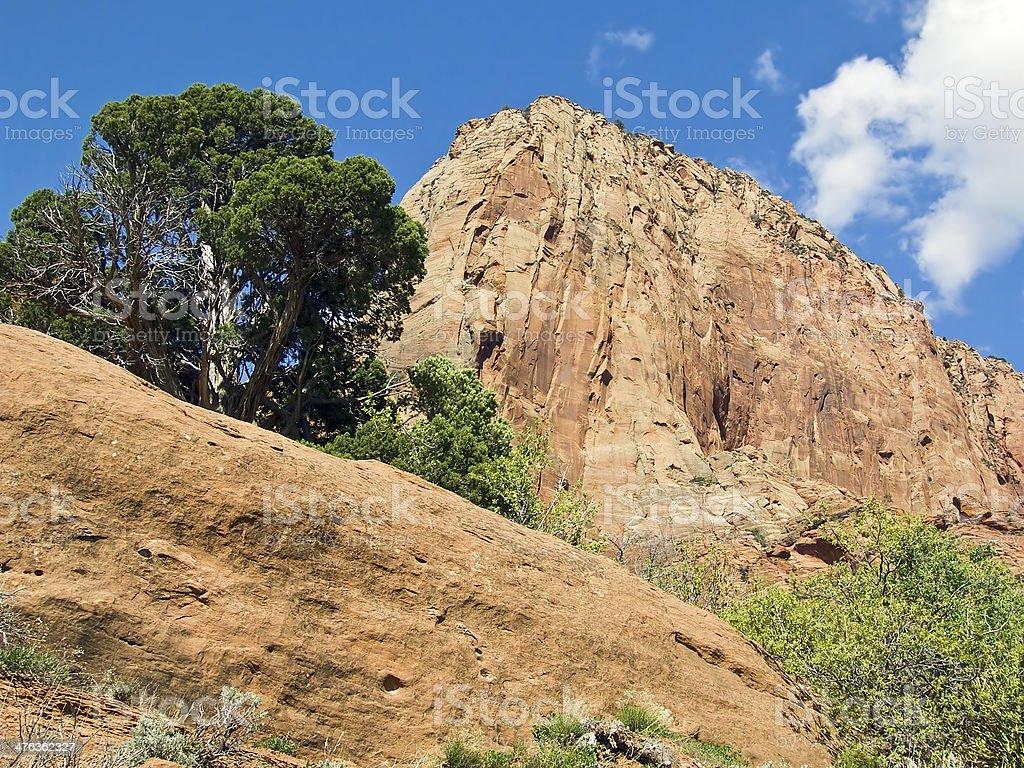 Kolob Canyon Boulders royalty-free stock photo