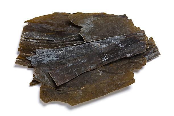 kombu algas - algas fondo blanco fotografías e imágenes de stock