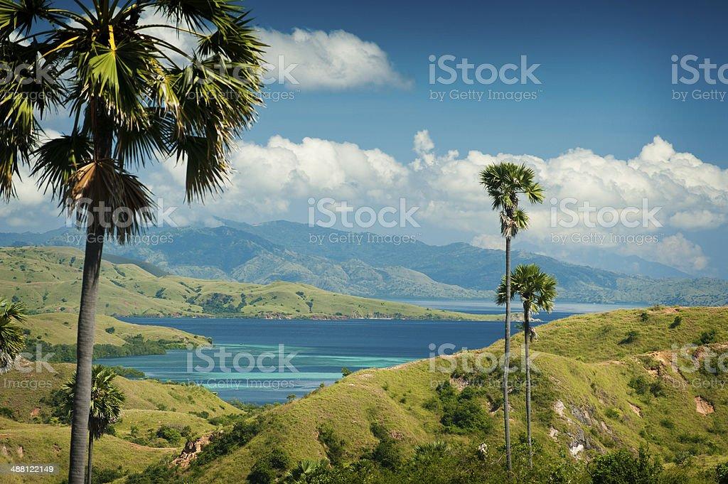 Komodo Island Trekking stock photo