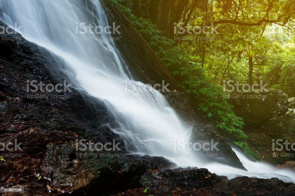 Kondalilla Falls in Kondalilla Falls National Park. stock photo