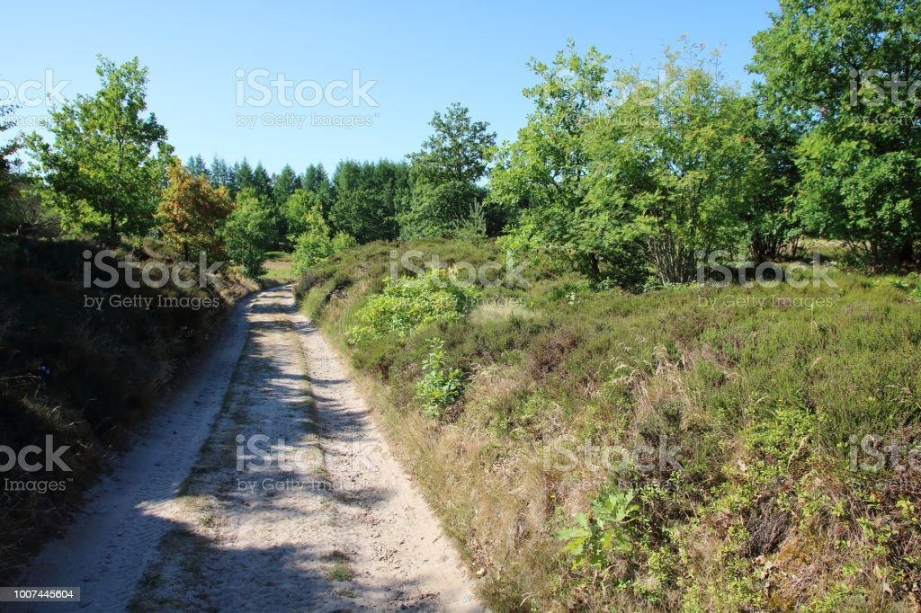 Kong Knaps dige rampart on Hærvejen the army road pilgrim route stock photo