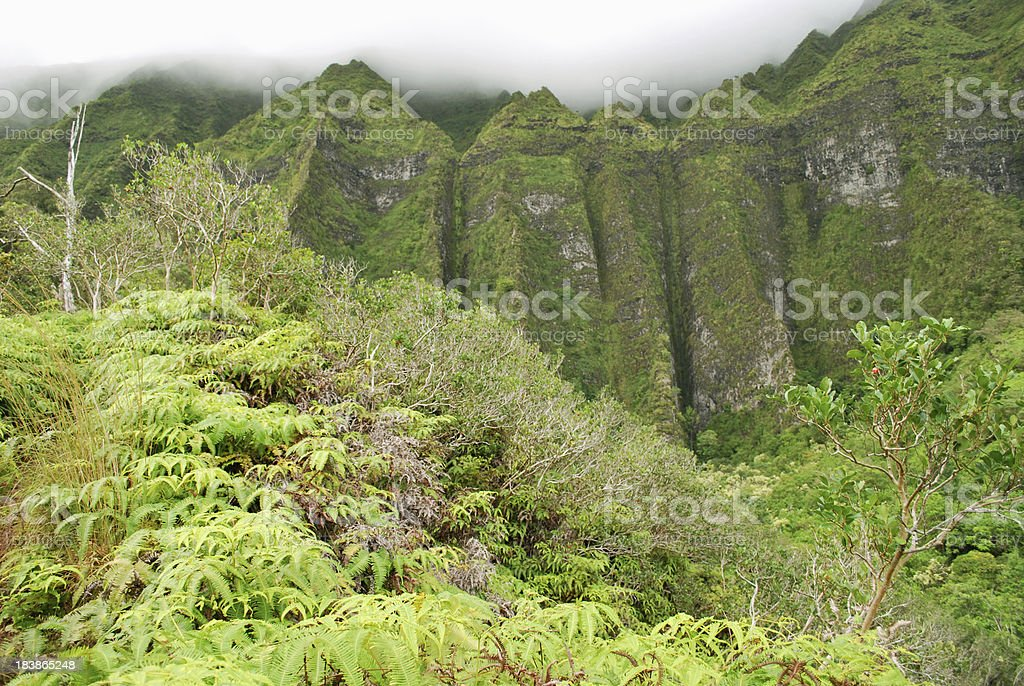 Koolau Mountains, Hawaii stock photo
