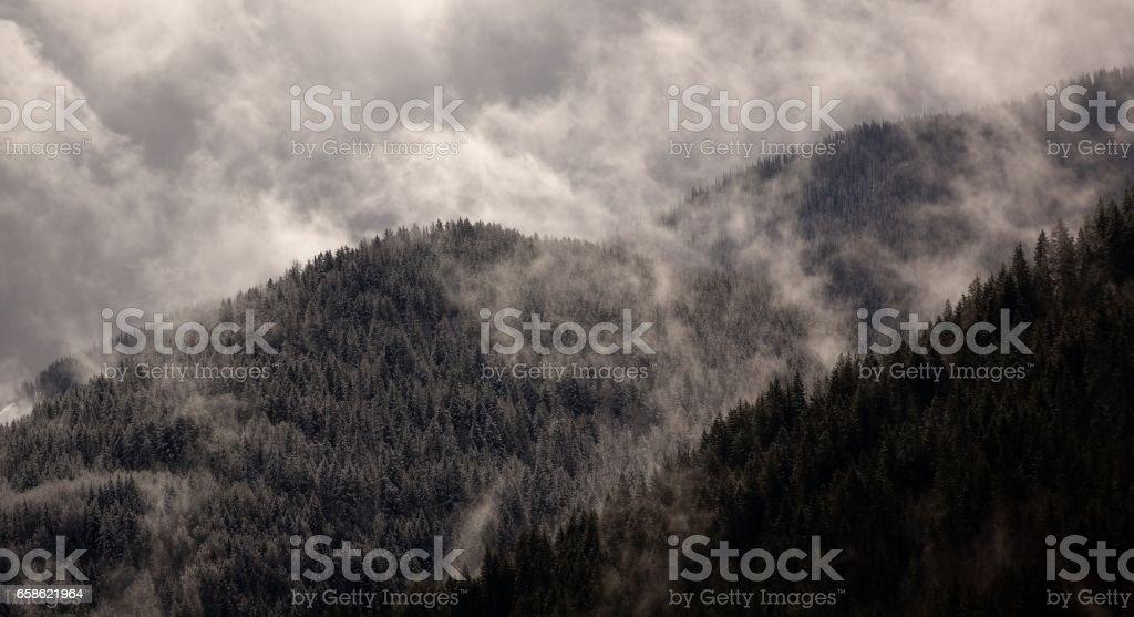 Kootenay Mist stock photo