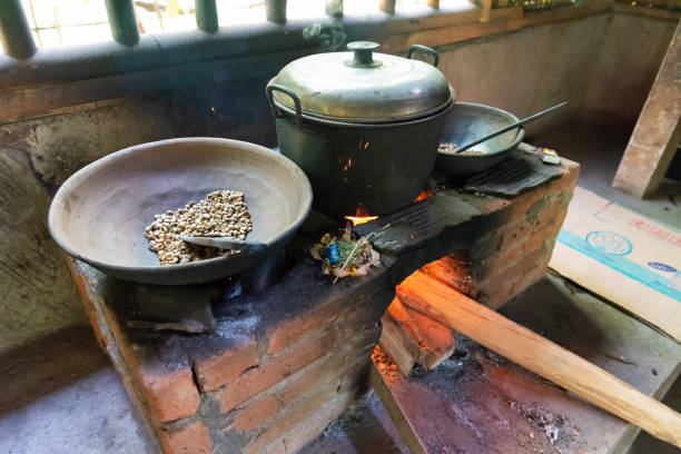 kopi luwak  - gato civeta fotografías e imágenes de stock
