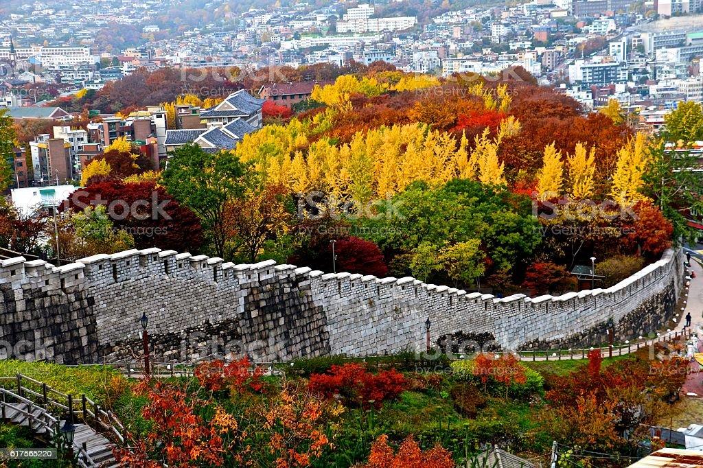 Korean autumn stock photo