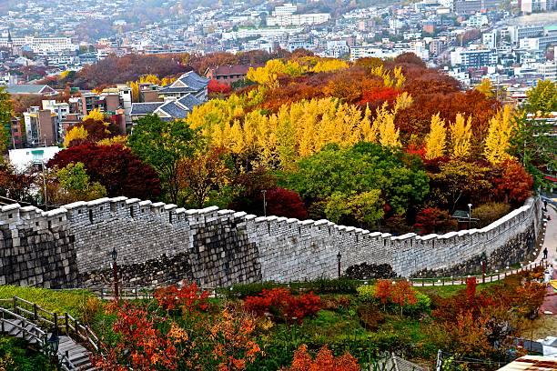 korean autumn - aleks66 stock pictures, royalty-free photos & images