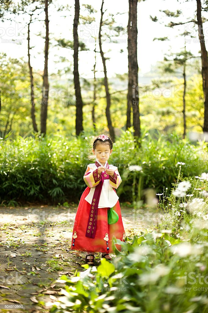 Korean child wearing a Traditional Hanbok, flower garden stock photo