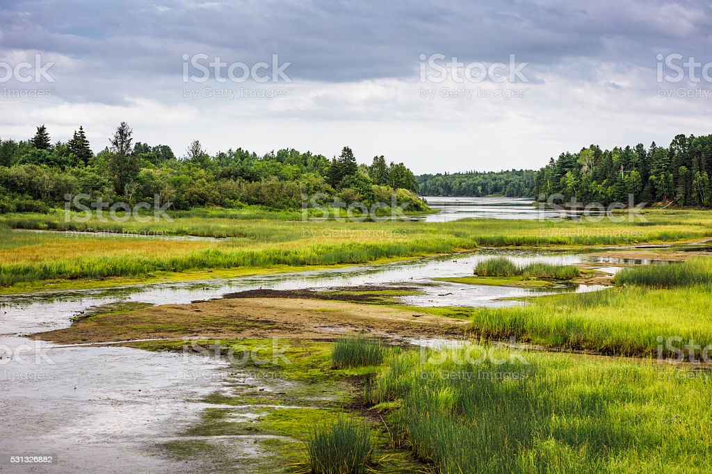 Kouchibouguac National Park wetland stock photo