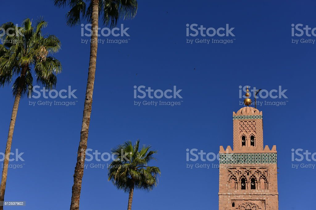 Telephoto image of the main city Islamic mosque and tall palms.