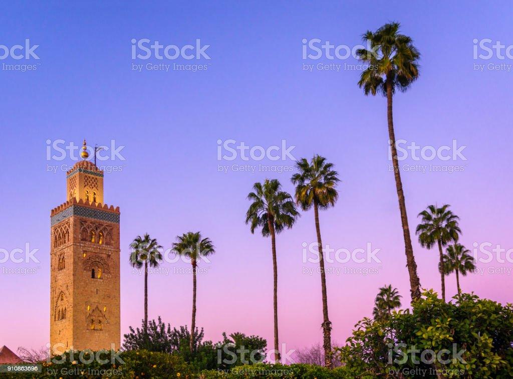 koutoubia minaret mosque marrakech stock photo blue hour palm tree stock photo