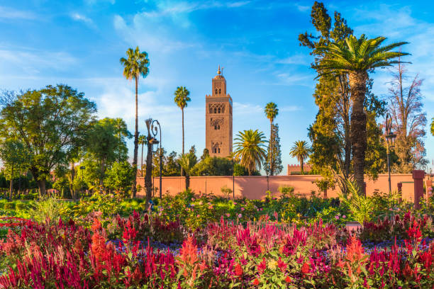 Koutoubia Mosque and gardem, Marrakesh View of Koutoubia Mosque and gardem in Marrakesh, Morocco minaret stock pictures, royalty-free photos & images