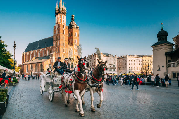 Krakow, Poland. Two Horses In Old-fashioned Coach At Old Town Square In Cloudy Summer Day. St. Mary's Basilica Famous Landmark stock photo