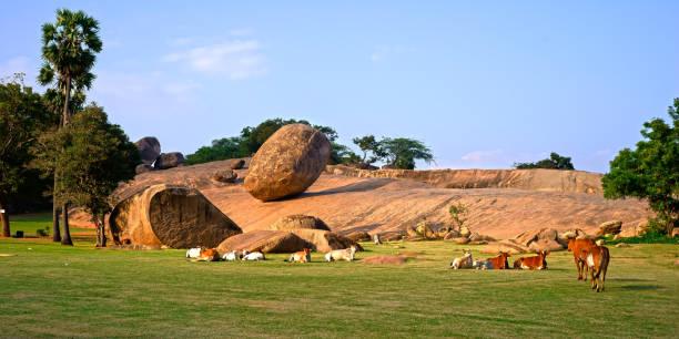 krishna's butterball mit kühen - havadi-nagy stock-fotos und bilder